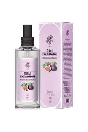 Rebul Fig Blossom Spreyli Cam Şişe Incir Kolonyası 100 ml 0