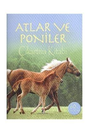 Tübitak Yayınları Atlar Ve Poniler & Çıkartma Kitabı - Joanna Spector 0
