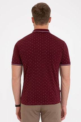 Pierre Cardin Erkek Bordo Slim Fit Polo Yaka T-Shirt 2