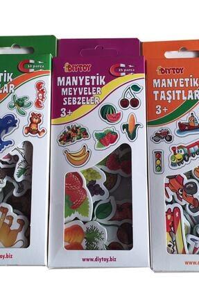 Diytoy 3'lü Manyetik Set Hayvanlar Meyveler Taşıtlar 0