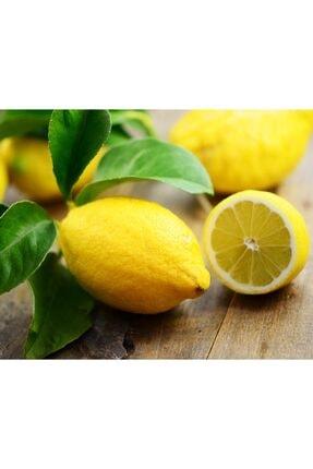 TROPİK SEPETİ Antalya Limonu - 3 Kg 2