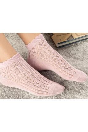 English Home Amber Pamuk Kadın Çorap Pembe 1