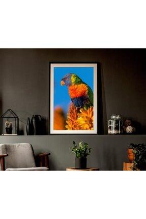 Mavi Kuş Tasarımlı Çerçeveli Tablo TRM21DBGCRV10636-20x30