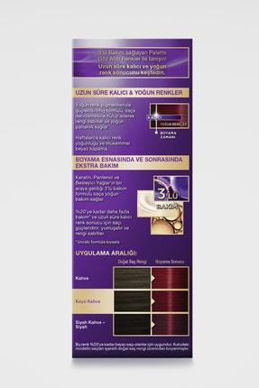 Palette Göz Alıcı Renkler 6-88 Yoğun Kızıl 3