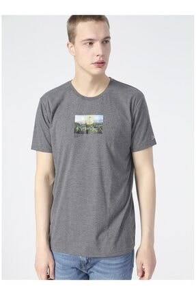 Picture of Erkek Gri  T-Shirt