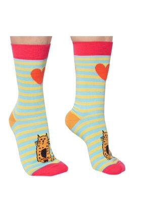 Biggdesign Cats Kadın Soket Çorap Seti 4