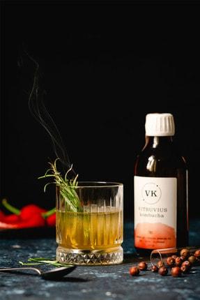 Vitruvius Kombucha 250 ml 12'li 4