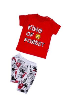anılço Erkek Bebek Kırmızı King Of Forest %100 Pamuklu 2'li Takım 0