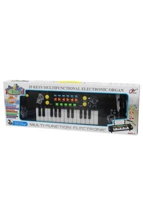 CanEm Kutulu Mikrofonlu 25 Tuşlu Org Çocuk Eğitici Piyano Müzik Seti 0