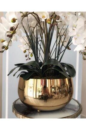 Hazella Home Büyük Gold Metal Orkide Saksısı Vazo 0