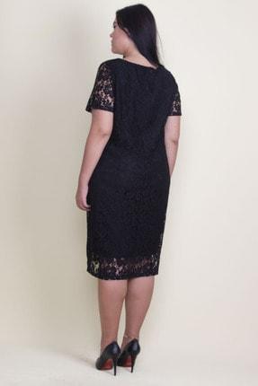 Şans Kadın Siyah V Yaka Astarlı Dantel Elbise 65N18221 2