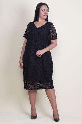 Şans Kadın Siyah V Yaka Astarlı Dantel Elbise 65N18221 4