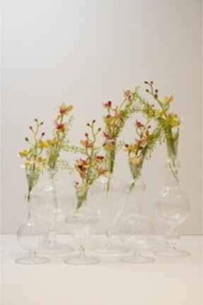 inside flowers Şeffaf Cam Vazo 2