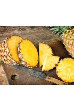 TROPİK SEPETİ Ananas - 4 Adet 3
