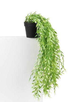 çiçekmisin Mini Siyah Plastik Saksıda Sarkan Yapay Yeşillik 0
