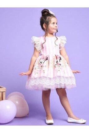 Riccotarz Kız Çocuk Pembe Minnie Çizgili Dantel Işlemeli Elbise 3