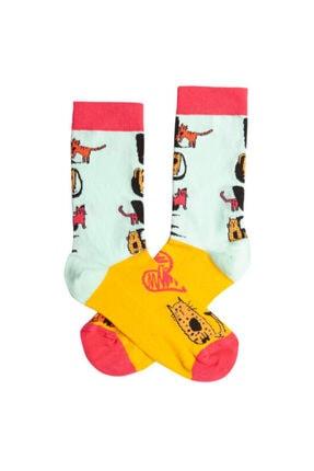 Biggdesign Cats Kadın Soket Çorap Seti 2