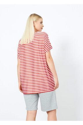 Adze Kadın Kırmızı Çizgili T-Shirt 2