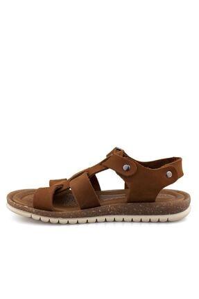 Cici Bebe Ayakkabı Erkek Çocuk Kahverengi Sandalet 3