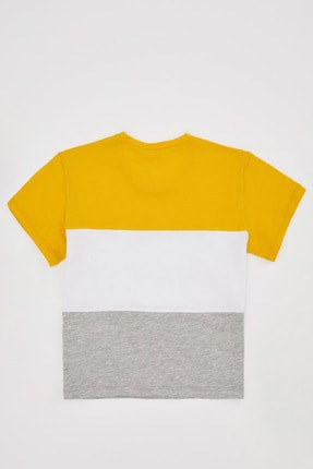 Defacto Kız Çocuk Renk Bloklu Kısa Kollu Tişört 4