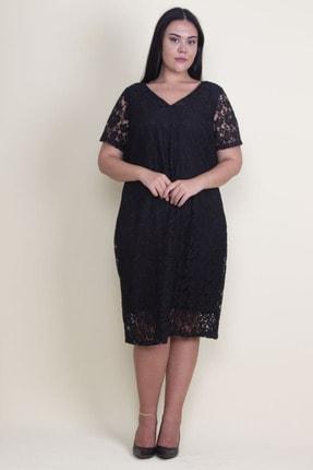 Şans Kadın Siyah V Yaka Astarlı Dantel Elbise 65N18221 3