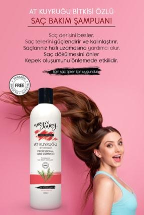 Airy n Carey Tuzsuz Şampuan, Dökülme Karşıtı, Hızlı Saç Uzatan Sülfatsız At Kuyruğu Şampuanı 330ml 86829837004anc 4