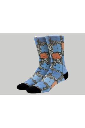 تصویر از Erkek Blue Factory Çorap