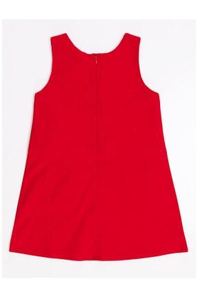 Denokids Kız Çocuk Kırmızı Uğur Böceği Kız Elbise 3