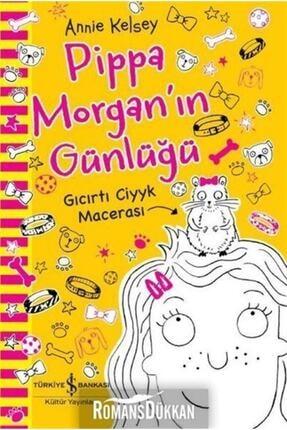 İş Bankası Kültür Yayınları Pippa Morgan'ın Günlüğü Gıcırtı Ciyyk Macerası 0