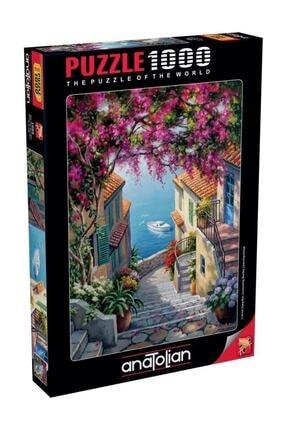 Anatolian Puzzle 1088 Kıyı Merdivenleri 1000 Parça Puzzle 1