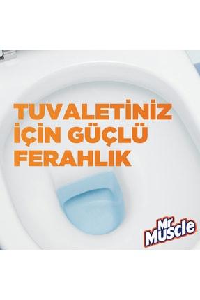 Mr. Muscle Mr Muscle Rezervuar Blok Tuvalet Temizleyici, 2'li Ekonomik Paket, 2x48 g 2