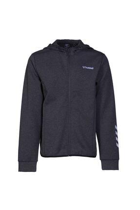 HUMMEL Sorento Zıp Hoodıe Erkek Sweatshirt 1