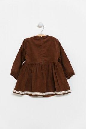 Catz Kids Kız Çocuk Kahverengi Kadife Güpürlü Elbise 3