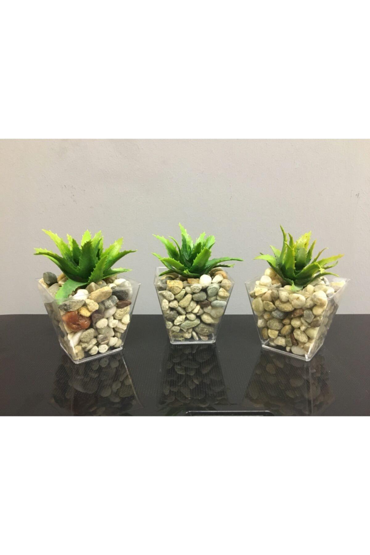 Sukulent 3'lü Çakıl Saksıda Yapay Sukulent Succulent Yapay Çiçek 6cmx9cm