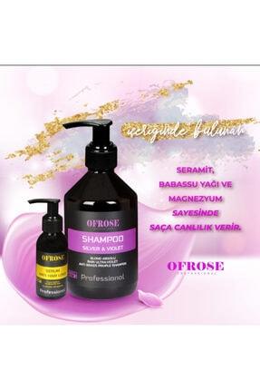 OFROSE Silver & Violet Mor Şampuan 400ml 2