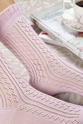 English Home Fishnet Long Pamuk Kadın Çorap Pudra Pembe 1