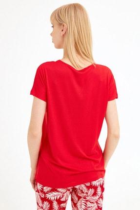 Fullamoda Kadın Kırmızı Kedi Baskılı Tshirt 3