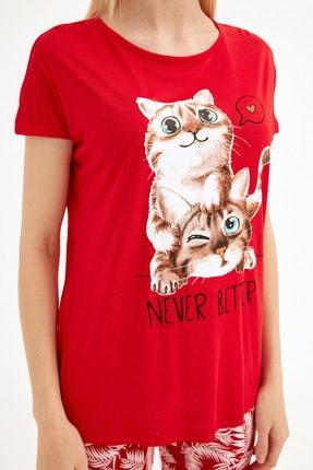 Fullamoda Kadın Kırmızı Kedi Baskılı Tshirt 4
