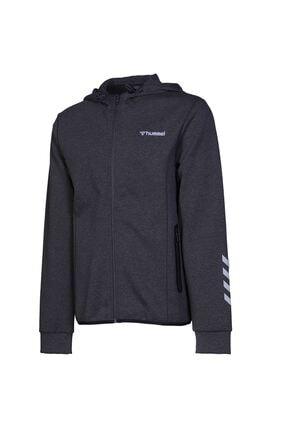 HUMMEL Sorento Zıp Hoodıe Erkek Sweatshirt 0