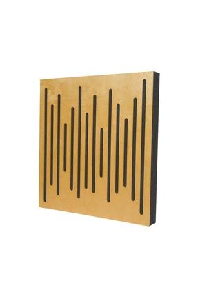 Akustik Düzenleme