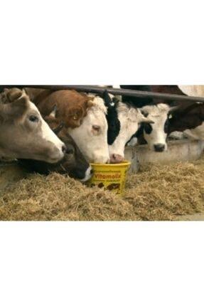 Royal Vitamolix 25 Kg Melas Bazlı Ruminant Yalama Kovası 3