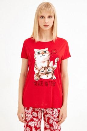 Fullamoda Kadın Kırmızı Kedi Baskılı Tshirt 2