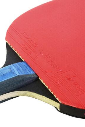 BUTTERFLY Timo Boll Gold Masa Tenisi Raketi 2