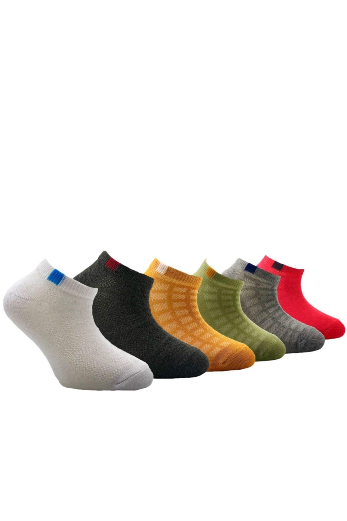 Belyy Çok Renkli 6 Lı Yazlık Çocuk Çorabı