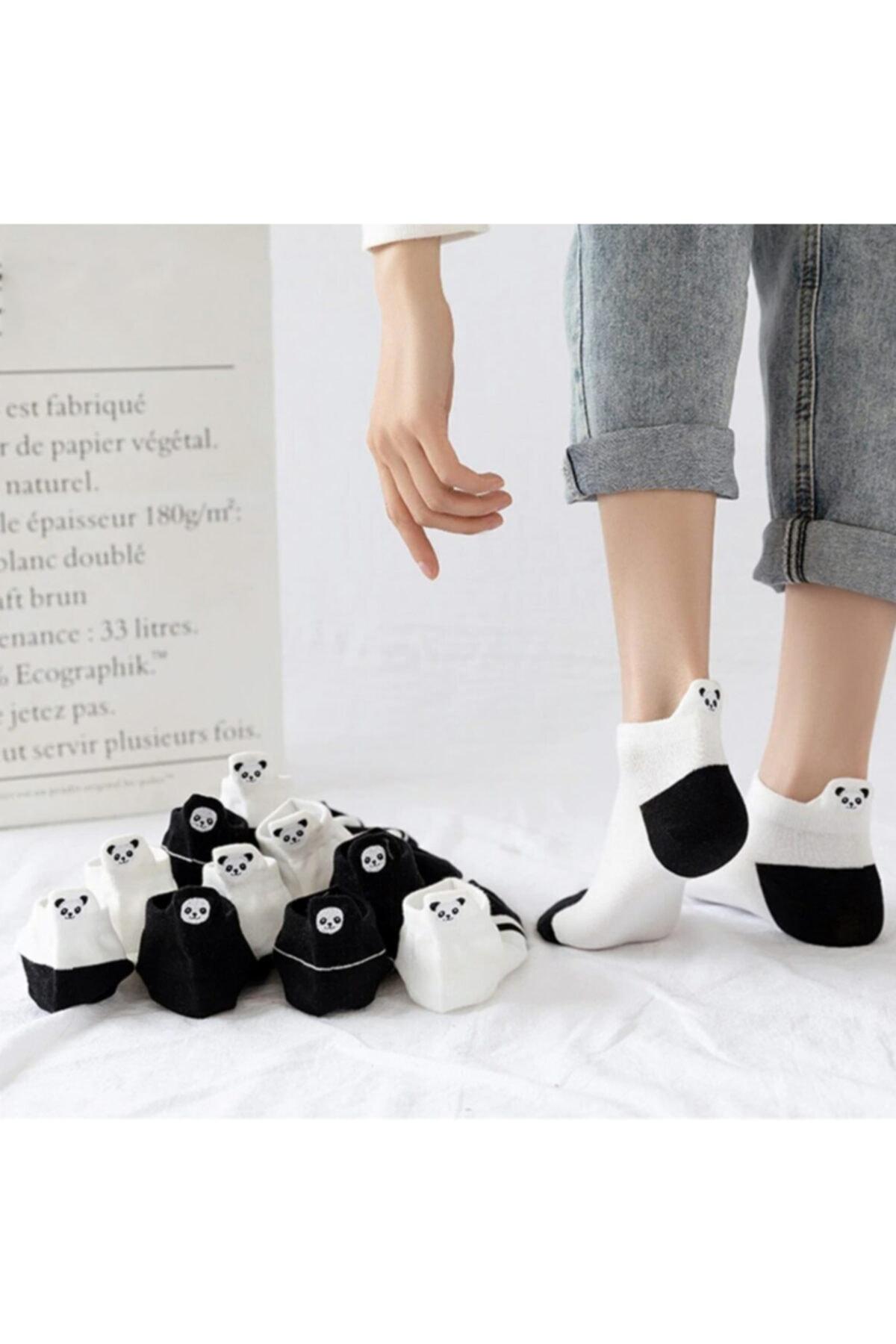 Kadın Siyah Ve Beyaz Panda Desenli Nakışlı Patik Çorap 5 Çift