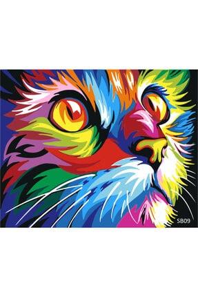 PlusHobby Sb09/kedi Figurü-sayılarla Boyama Seti 40x50cm Tuval 0