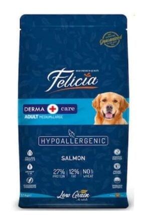 Felicia Az Tahıllı Somonlu Hypoallergenic Yetişkin Köpek Maması 15 Kg 0