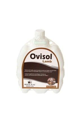 Royal Ovisol Lamb Kuzu Yem Katkısı 5 Lt 0