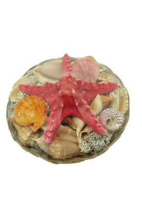 TahtakaleToptancıları Deniz Kabuğu Sepet Küçük Boy 0