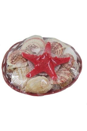 TahtakaleToptancıları Deniz Kabuğu Sepet Küçük Boy 1